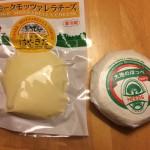 忘れないうちに旅の記録を~チーズ部編
