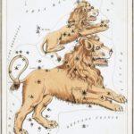 8月の星座〜獅子座とヘラクレス