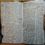 秘伝の書 (おまけ:二月のマンスリー絵日記)