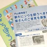札幌市が円山動物園でゾウの飼育を検討〜導入の是非についてアンケートを実施へ